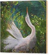 Flamboyant Egret Wood Print