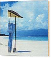 Flamenco Beach And Storm Wood Print