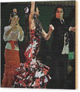 Flamenco Series No 13 Wood Print