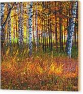 Flaming Grass Wood Print