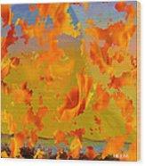Flaming Indian Girl Sunset Wood Print