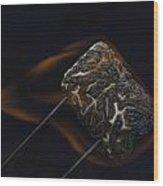 Flaming Marshmallow Wood Print