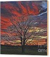 Flaming Oak Sunrise Wood Print