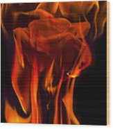 Flaming Rose Wood Print
