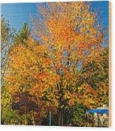 Flaming Wood Print