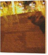 Flaming Veitnam Wood Print