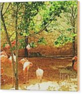 Flamingo 1 Wood Print
