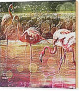 Flamingo Art Wood Print