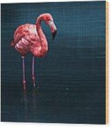 Flamingo - Blue Wood Print