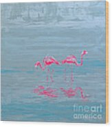Flamingo Couple In Shallow Waters Wood Print