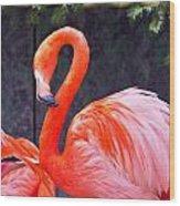 Flamingo In The Wild Wood Print