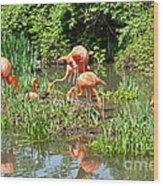 Flamingo Island Wood Print