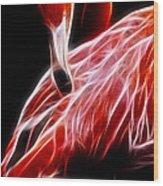 Flamingo Portrait Fractal Wood Print
