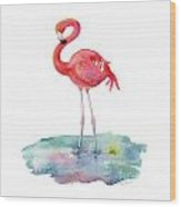 Flamingo Pose Wood Print