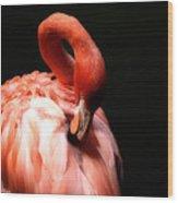 Flamingo Softness Wood Print