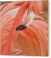 Flamingo - Spirit Of Balance Wood Print