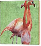 Flamingo Twist Wood Print by Jeff Kolker