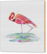Flamingo View Wood Print