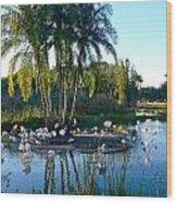 Flamingo Watering Hole Wood Print