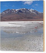 Flamingos At The Altiplano In A Salt Lake Wood Print