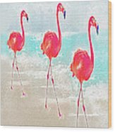 Flamingos On The Beach Wood Print