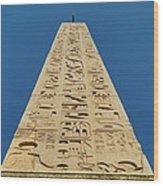 Flaminio Obelisk Wood Print