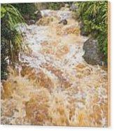 Flash Flood In West Coast Creek Of Nz South Island Wood Print