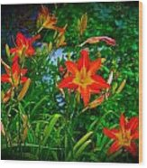 Flashes Of Garden Fire Wood Print