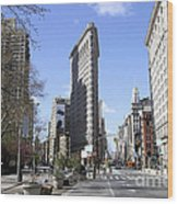 Flat Iron Building-4 Wood Print