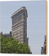 Flat Iron Building Wood Print by Bill Cannon