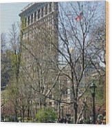 Flatiron Building-3 Wood Print