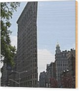 Flatiron Building - Manhattan Wood Print