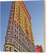 Flatiron Building Profile Wood Print