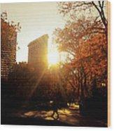 Flatiron Building Sunset - Madison Square Park Wood Print