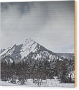 Flatiron Winter Wood Print