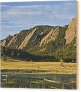 Flatirons From Chautauqua Park Wood Print by James BO  Insogna