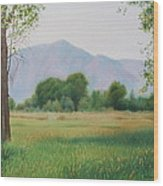 Flatirons From Dry Creek Meadow Wood Print