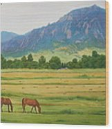 Flatirons From Jay Road Horse Farm Wood Print