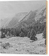 Flatirons In Winter - Black And White Wood Print