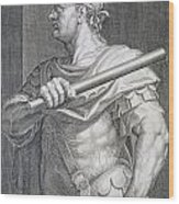 Flavius Domitian Wood Print by Titian