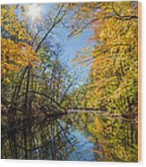 Fleeting Fall  Wood Print