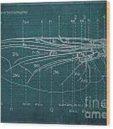 Flesh Fly Wing Blueprint Green Wood Print