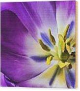 Fleur Viii Wood Print
