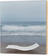 Flexy Batyline Mesh Curve Chaise On Malibu Beach Wood Print