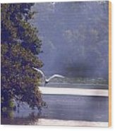 Flight Above Water IIi Wood Print