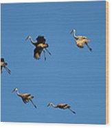 Flight Formation  Wood Print