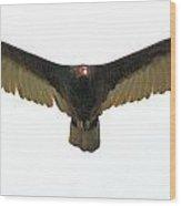 Flight Of Beauty  Wood Print