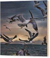 Flight Of The Seagulls Wood Print