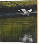 Flight Over Pond Wood Print