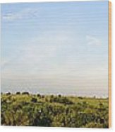 Flint Hills 2 Wood Print